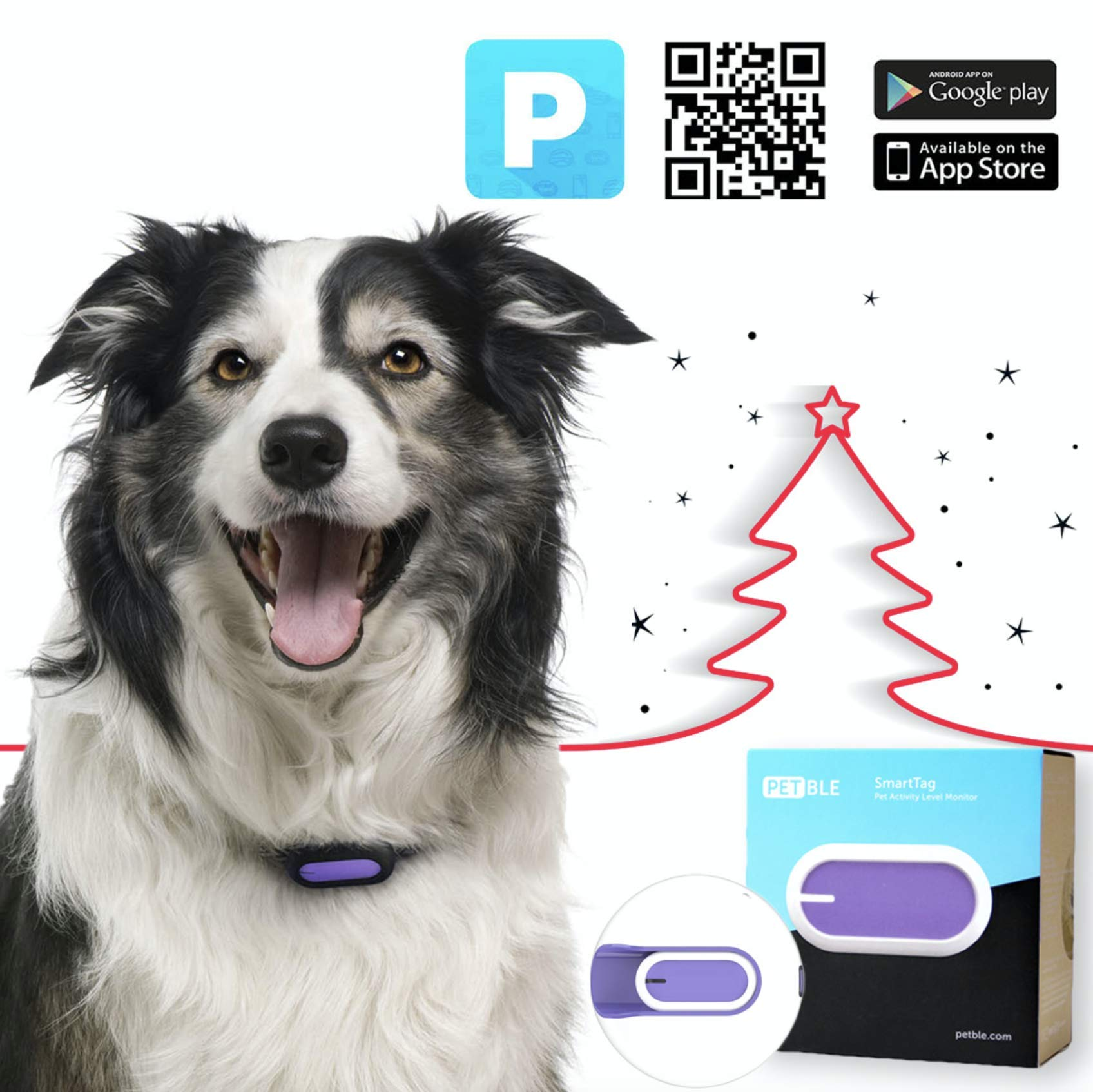 PETBLE Dog Cat Pet Smart Tag Tracker - Portable Bluetooth Wireless 4.0 Lightweight, Waterproof, Compatible with Multiple Smart Devices 24/7 Activity Monitor Pet Health Tracker for IOS Android (Purple) by PETBLE
