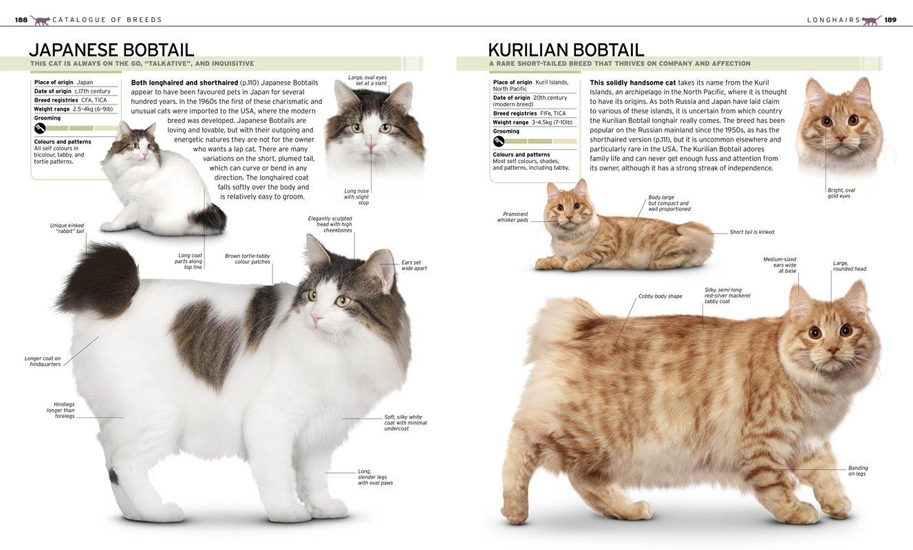 The plete Cat Breed Book Dk the plete Cat Breed Book DK