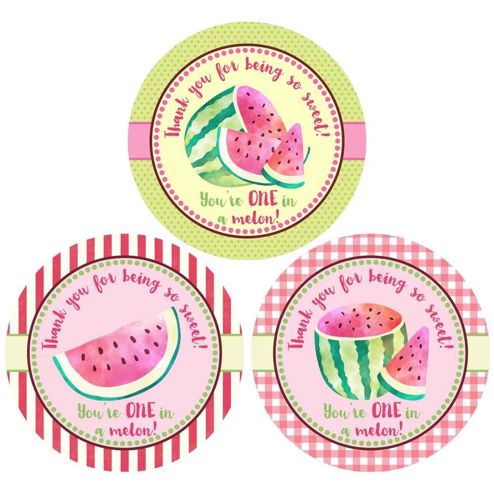 Watermelon Thank You Sticker Labels - Girl Children Birthday Baby Shower Party Supplies - Set of 30