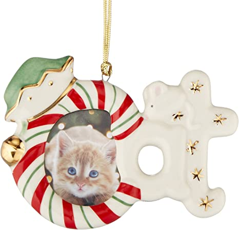 Amazon Com Lenox Cat Frame Ornament Magnet 3 Inch Home Kitchen