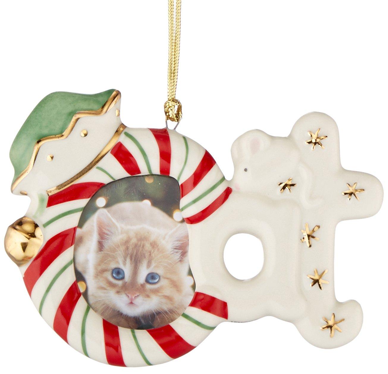 Amazon.de: Lenox Katze Rahmen Ornament/Magnet, elfenbeinfarben, 7, 62 cm