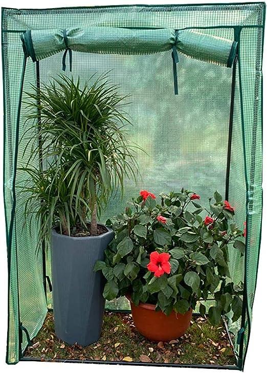 LIANGLIANG Invernadero De Jardín Huerta De Invierno Marco Extra Grande Cobertizo Cálido Planta A Prueba De Lluvia Conservación del Calor Plástico (Color : Green, Tamaño : 100cmx48cmx150cm): Amazon.es: Jardín