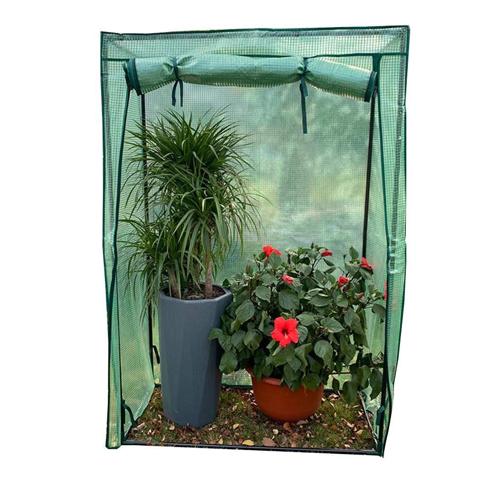 LIANGLIANG ビニールハウス温室 冬のガーデニングウォームシェッド防水工場熱保存カバーPEプラスチック耐久性 (色 : Green, サイズ さいず : 100cmx48cmx150cm) B07L78BQ9X Green 100cmx48cmx150cm