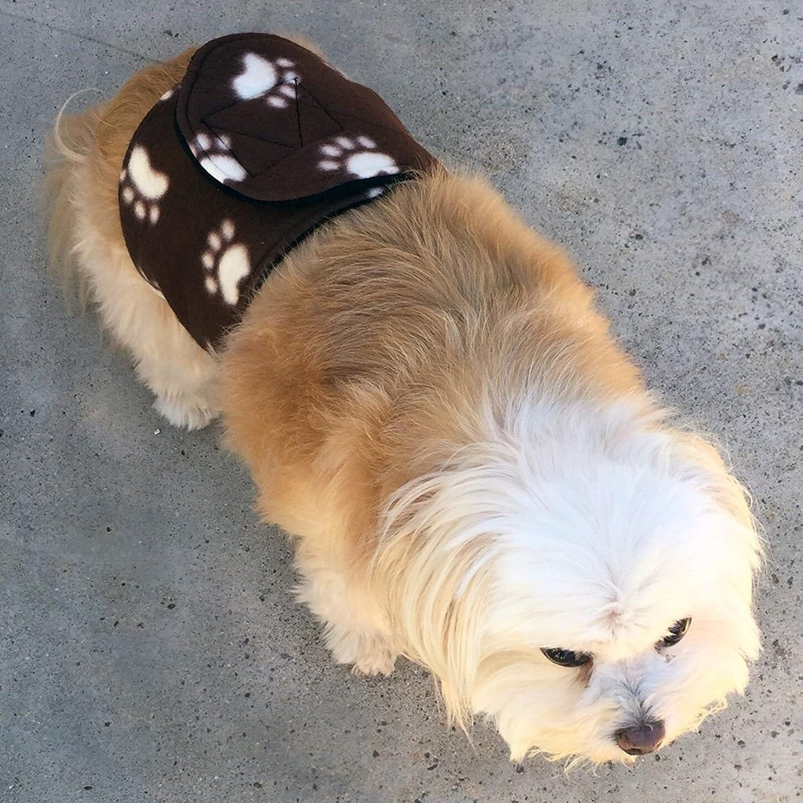 Cuddle Bands Premium Belly BandMale Dog Training - 3