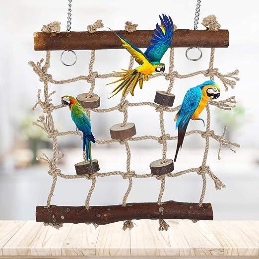 Red de escalada para pájaros Cuerda de cáñamo Escalera para escalar jaulas colgantes Juguete para masticar Jugar Gimnasio Columpio para loros, periquitos, periquitos, cacatúas conures guacamayos: Amazon.es: Productos para mascotas