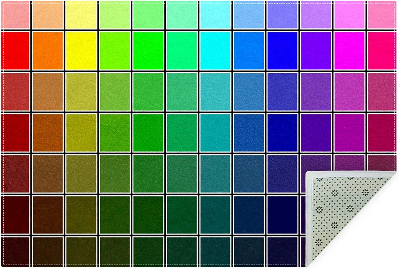 DEYYA Home Decorative Cool Color Swatches Area Rug 60x39 Inch,Polyester Area Rug Carpet Non-Slip Floor Mat Doormats for Living Room Bedroom