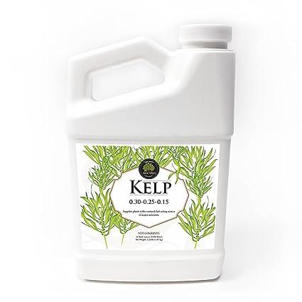 Amazon com : Age Old Kelp Liquid Fertilizer, 32-Ounce Bottle