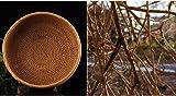 100% Handmade Weaved Storage Bin Fruit Basket