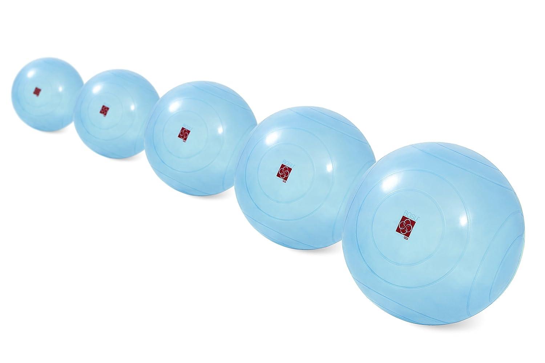 BOSU - Ballast Ball - 5 pack: Amazon.es: Deportes y aire libre