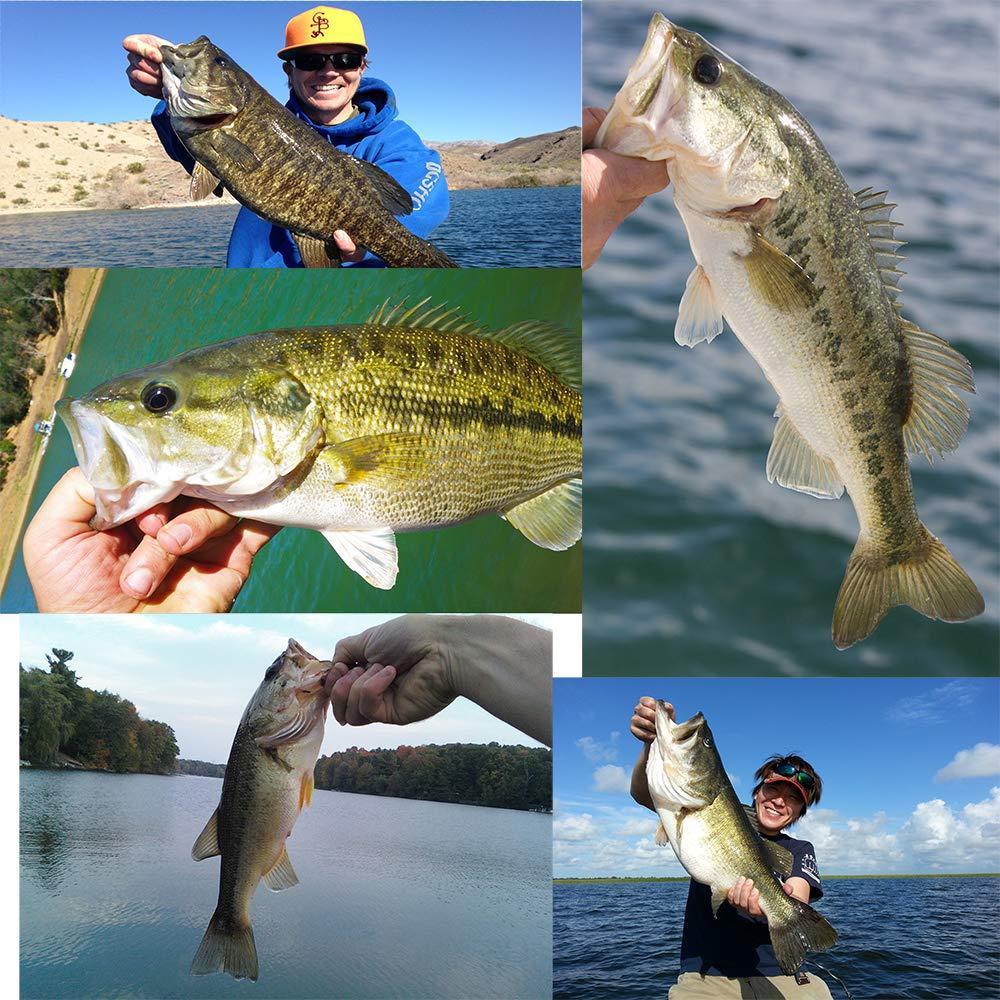 YL 0UTDOOR Frog Fishing Lures 2.95in/1.34oz Topwater Baits for Bass Snakehead Salmon Saltwater Freshwater Fishing