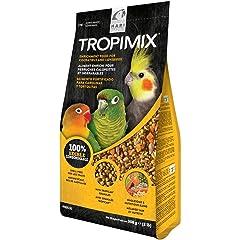 Amazon.es: Pájaros: Productos para mascotas: Juguetes ...