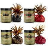 Kama Sutra Honey Dust Body Powder, Set of 4 (Strawberry,Rasberry, Chocolate & Honeysuckle)