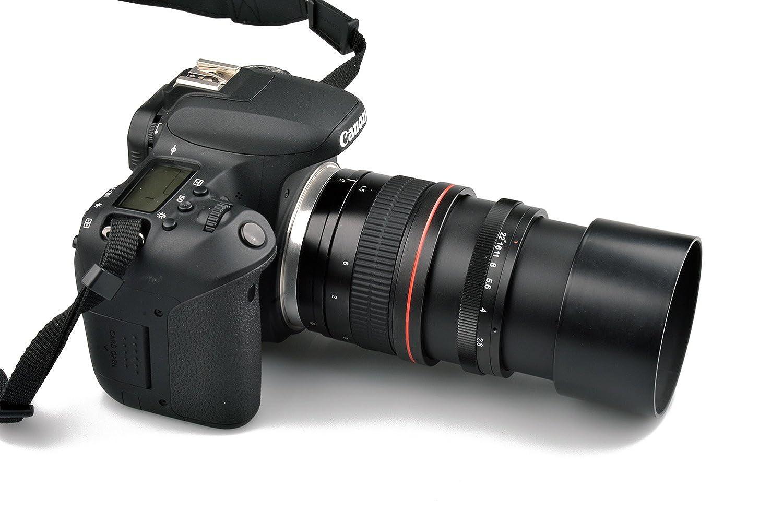 Lightdow - Objetivo Macro de teleobjetivo para cámaras Canon Nikon ...
