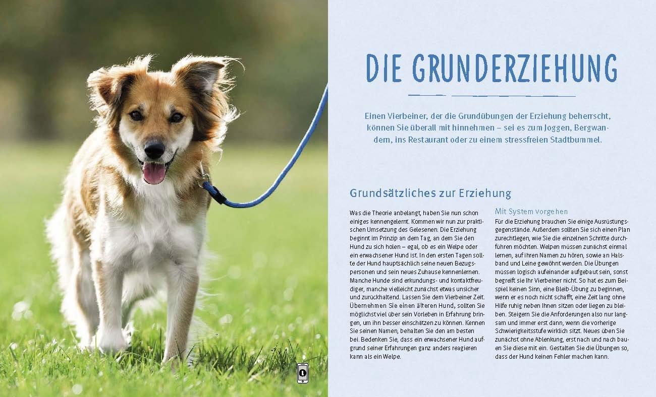 Hundeerziehung: Gut erzogen - fit für den Alltag Taschenbuch – 9 ...