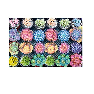 Chinaware 1000 Pieces Succulent Plants Pattern Puzzle Adult Children Puzzle Gift: Clothing