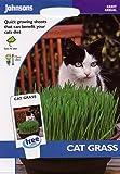 johnsons seeds - Pictorial Pack - Fiore - Erba Gatto - 25g Semi