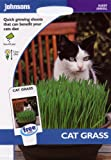 johnsons seeds - Pictorial Pack - Fiore - Erba Gatto - 25g Semi