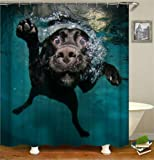 Blue Fabric Art Shower Curtain Black Funny Labrador Dog Swimming in the Water Theme Bathroom Decor with Free Hooks Waterproof Bath Curtain YLB11 (dog)