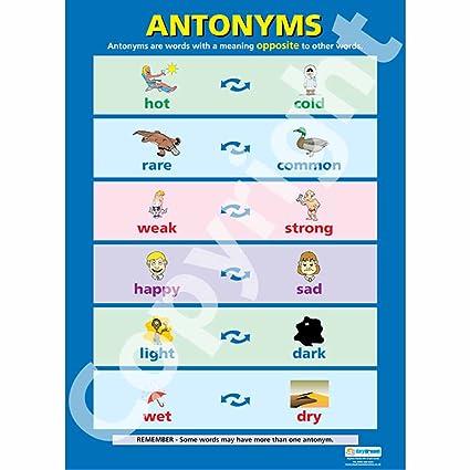 Antonyms Poster in Hochglanzpapier (A1 840mm x 584mm