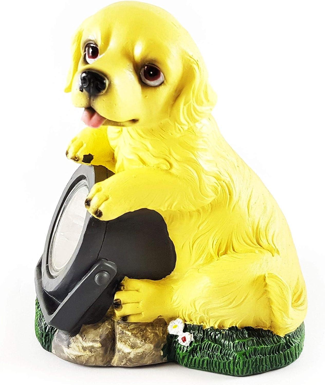 Wichtelstube-Kollektion Gnomo Stube de colección Solar Perro Perro con lámpara Solar Figura para jardín: Amazon.es: Jardín