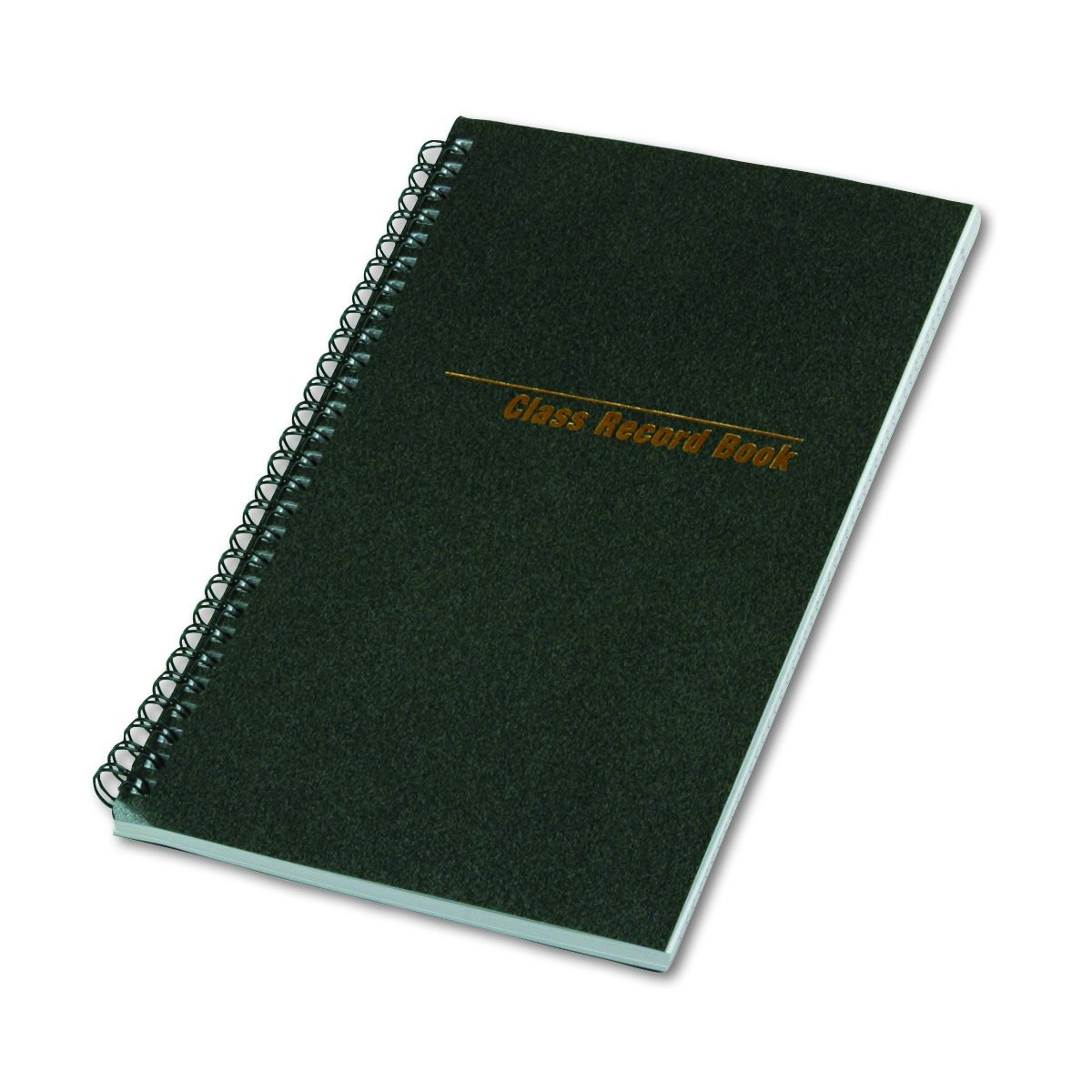 National 33990 Class Record Book, 6-Day/6-Week Format, 9-1/2 x 5-3/4, Black, 120 Pages