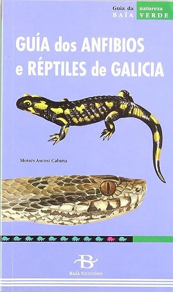 Guía dos anfibios e réptiles de Galicia (Baía Verde): Amazon.es: Asensi Cabirta, Moisés: Libros