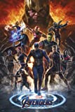 Grupo Erik Póster Vengadores Marvel Endgame Grupo, 61x91,5 cm