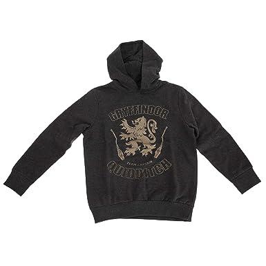 HARRY POTTER - Sudadera capitán del Equipo de Quidditch de Gryffindor para niños y niñas: Amazon.es: Ropa y accesorios