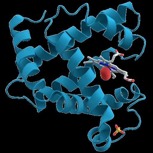 Las enzimas: Amazon.es: Appstore para Android