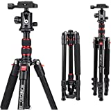 BONFOTO B690A Lightweight Aluminum Tripod Portable Travel Camera Stand with 360 Degree Ball Head and Carry Bag