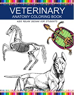 Veterinary Anatomy Coloring Book Saunders 9781974801787 Amazon