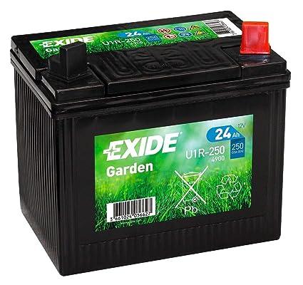 EXIDE U1R-250 (4900) 895 12V 24AH 250A Batería de jardín ...
