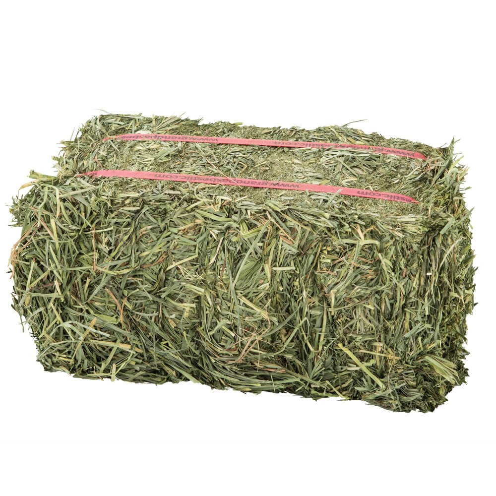 Grandpa'S Best Orchard Grass Bale, 5 Lbs