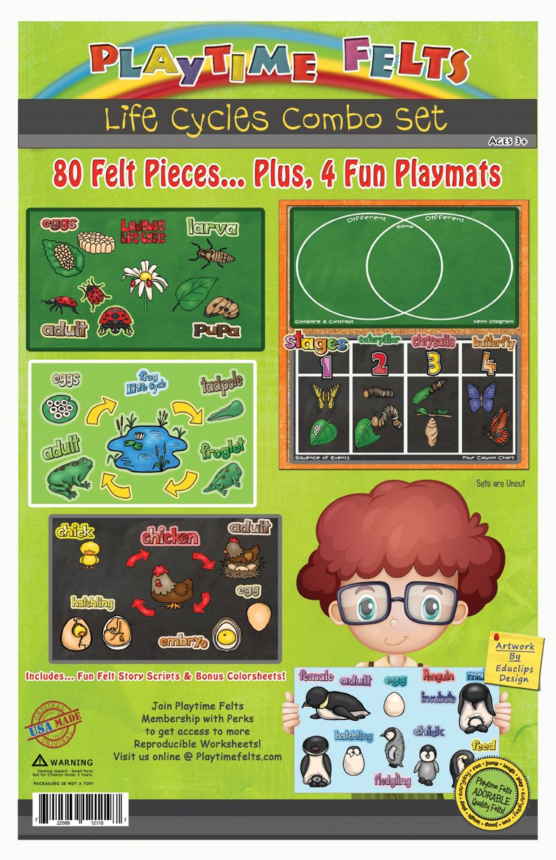 Life Cycles Flannel Board Stories for Toddlers - Includes 4 FELT Chalkboard Backgrounds with Compare & Contrast and Sequence of Events - Perfect for Story Time - Features 80 Felt Pieces