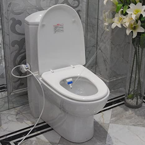 Astonishing Toilet Seat Bidet Luxurious And Hygienic Eco Friendly And Pdpeps Interior Chair Design Pdpepsorg