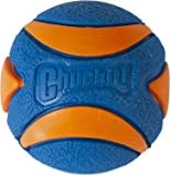 Chuckit! Ultra Squeaker - 2pk, Blue & Orange, Medium