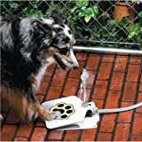 Durable Outdoor Doggie Water Fountain Step-on Fresh Cold Drinking Water