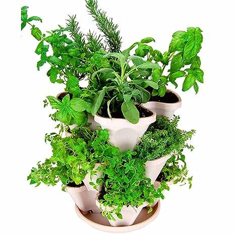 Genial Mini Garden Stacker  Stackable/Hangable All Season Self Watering Planter   Indoor