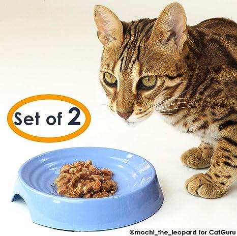 CatGuru - Cuenco para gato sin estrés, para aliviar la fatiga ...