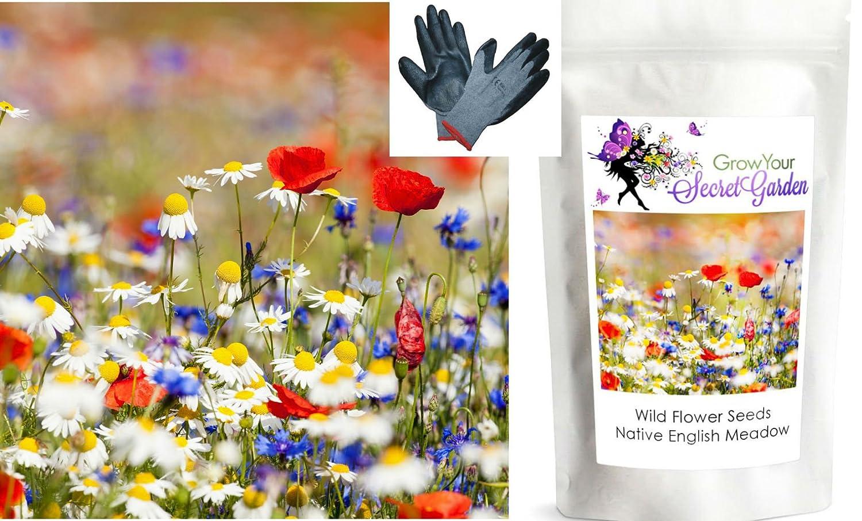 Wild flower seeds meadow mix only flowers 40 g bulkbargain wild flower seeds meadow mix only flowers 40 g bulkbargain amazon uk garden outdoors izmirmasajfo