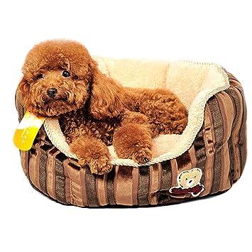 bwiv Fleece mascotas Caseta para gato y perro cojín cama sofà Cálido Frío Invierno Verano Lavable 2 formatos: Amazon.es: Hogar