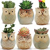 LUCKEGO 6 In Set 2.5 Inch Owl Pot Ceramic Flowing Glaze Base Serial Set Succulent Plant Pot With A Hole
