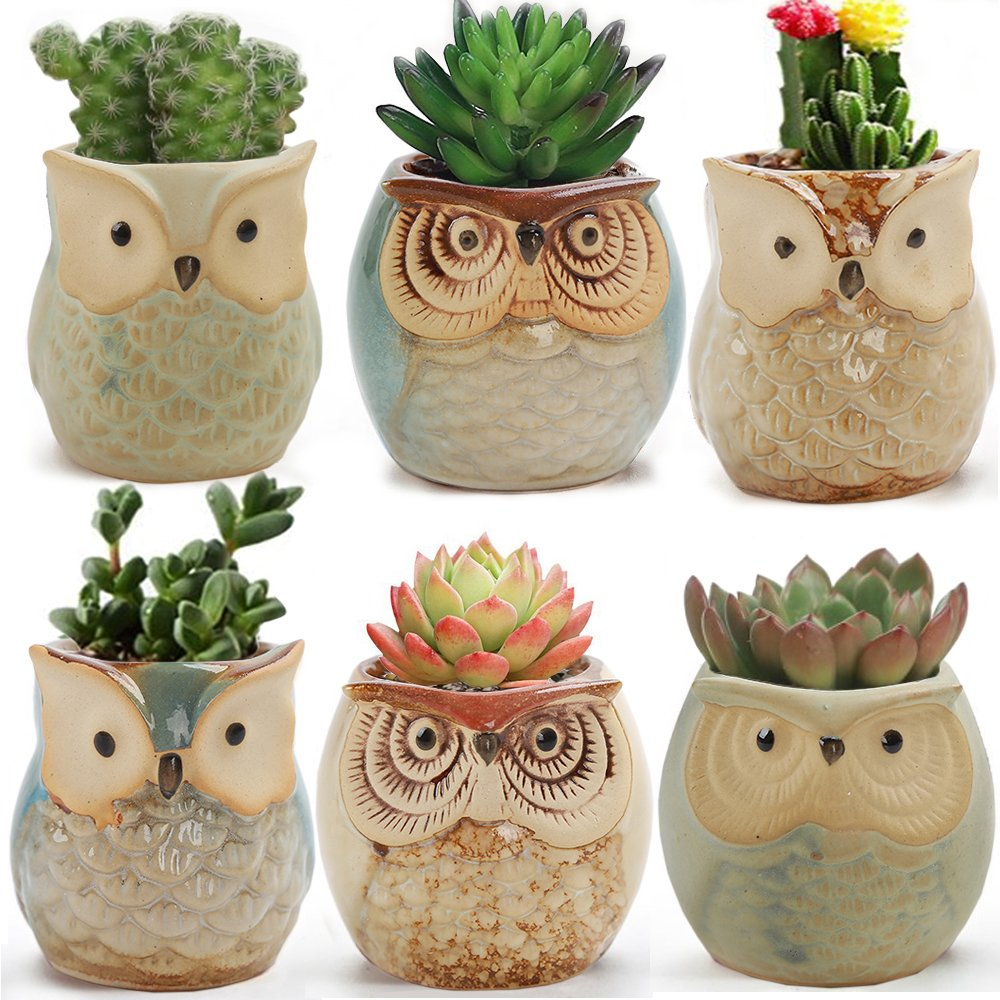 LUCKEGO 6 In Set 2.5 Inch Owl Pot Ceramic Flowing Glaze Base Serial Set Succulent Plant Pot With A Hole by LUCKEGO