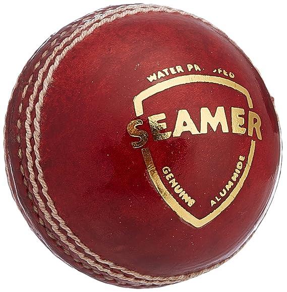 SG Seamer Leather Cricket Ball