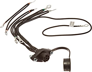 Amazon.com: WARN 39886 Winch Component Accessory: Remote Control Socket  Assembly for 5 Wire Electrical System: Automotive   Winch Wiring Diagram 4 Prong Female Plug      Amazon.com