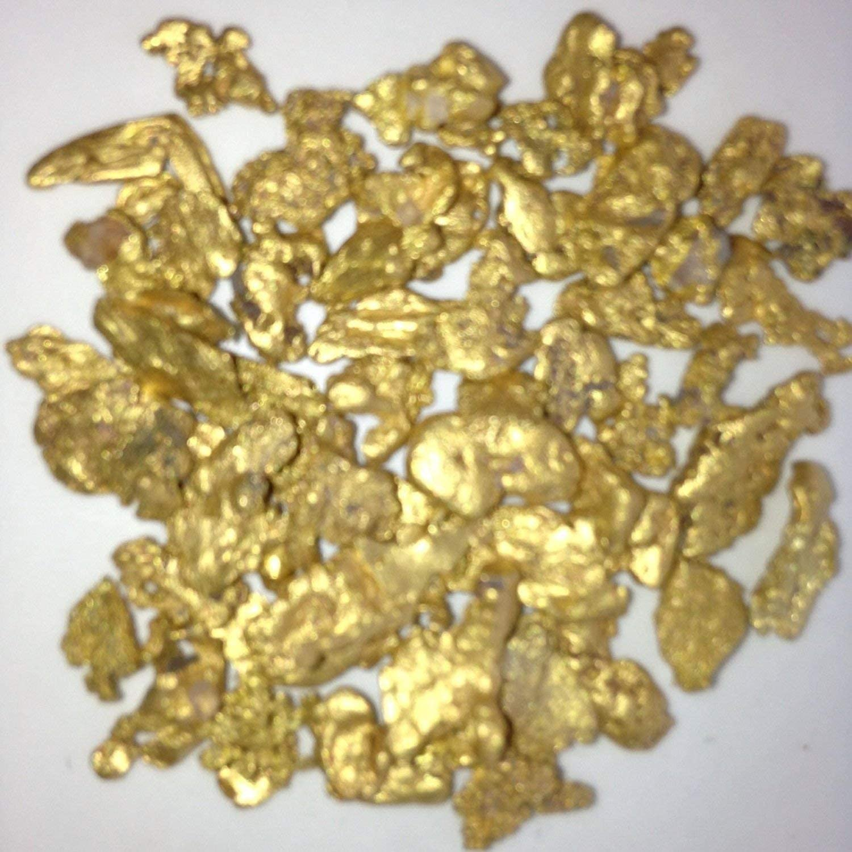 Alaskan Yukon BC Gold Rush Nuggets #6 Mesh 1 Gram of Fines