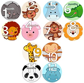 5052f2792 ... FACES 2 Baby Boy Girl Monthly Onesie Stickers Baby Month Onesie  Stickers Baby Shower Gift Photo Shower Stickers, safari jungle monkey hippo  cat dog lion ...