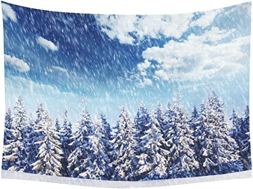 INTERESTPRINT Winter Scene Wall Art Home Decor, Beautiful Winter Landscape with Snowy Trees Tapestry Wall Hanging Art Sets 80 X 60 Inches