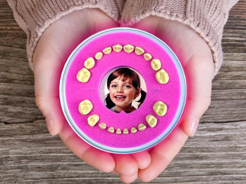 Baby Tooth Box Pink, Girl – Firsty Round – Including Logbooklet – ABF – Fast Delivery