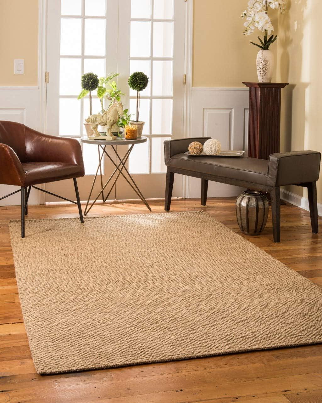 Natural Area Rugs, Natural Fiber Handmade Jewel Jute Rug 8 x 10 Brown